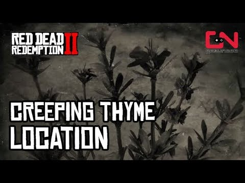 Creeping Thyme Location Red Dead Redemption 2